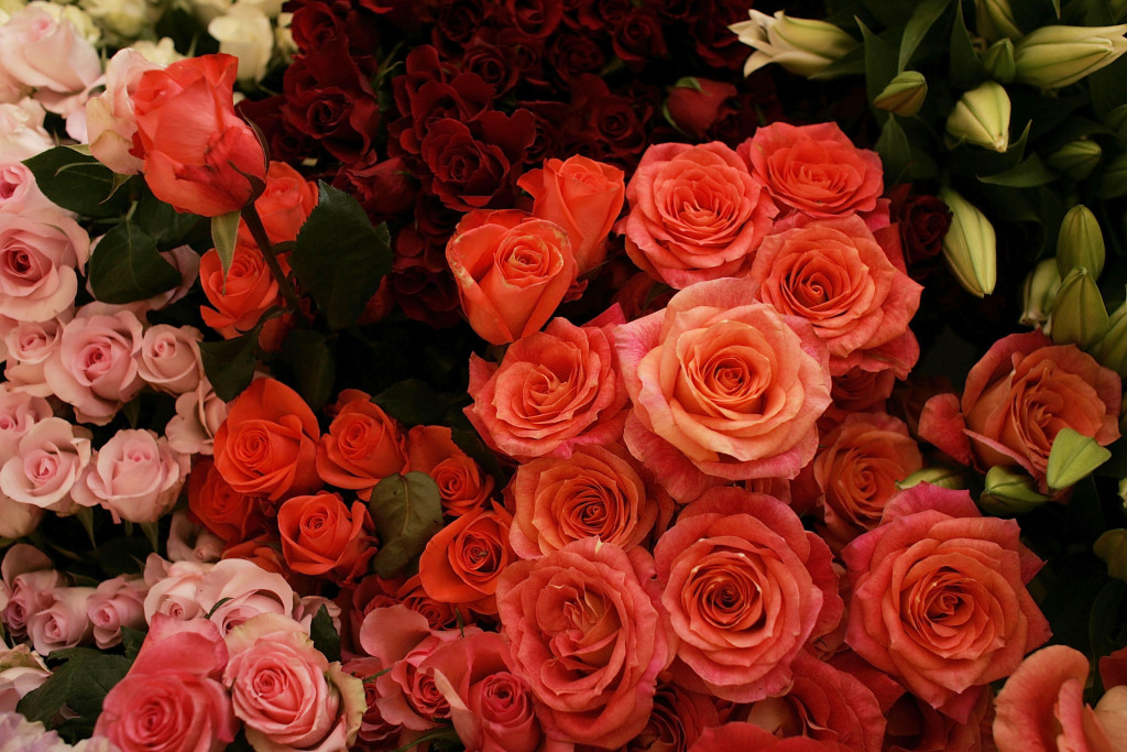 Valentine's Day Boosts Demand For Fresh Flowers