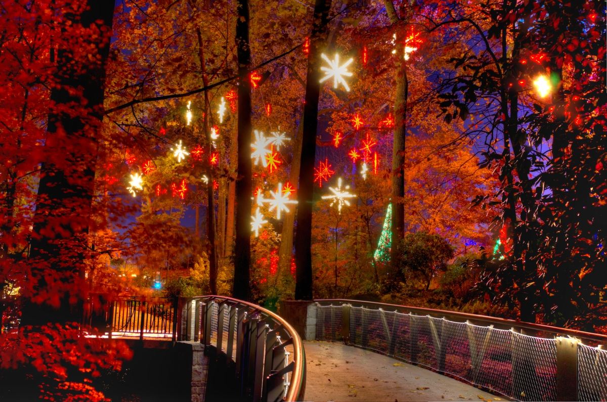 6 best places to see christmas lights in atlanta gafollowers for Holiday lights botanical gardens