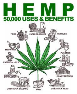 hemp use