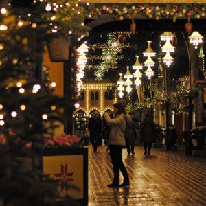 fa13_tivoli_christmas_emily_lavieri-scull_1