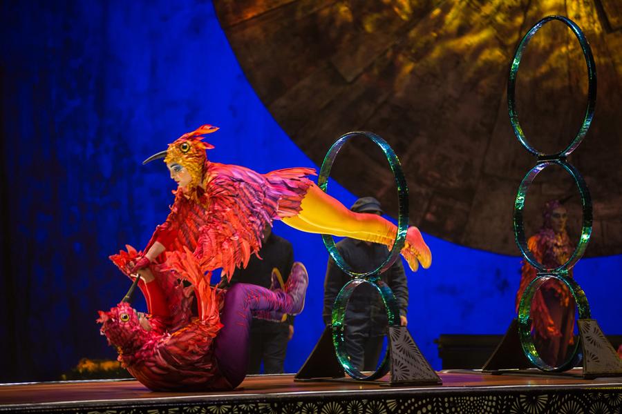 Hoop Diving Cirque du Soleil Luzia