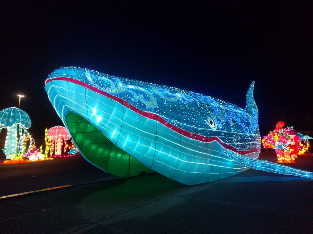 Wally the whale at Illuminate