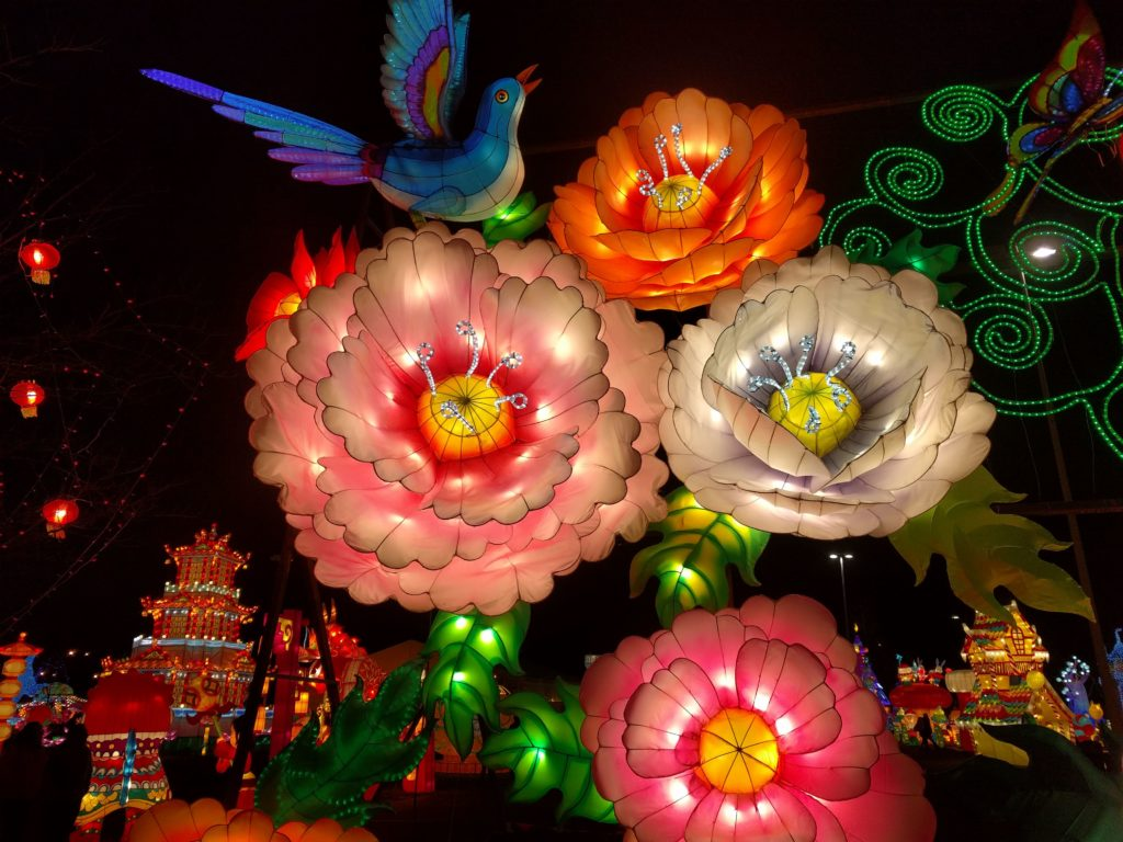 Flowers that open and close at Illuminate Chinese Lantern Festival