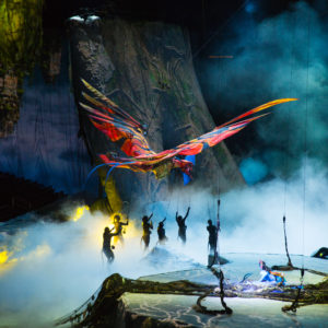 TORUK – The First Flight